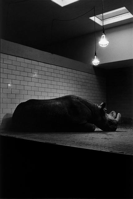 Joachim Richau, Berlin 1989, aus dem Zyklus BERLINER TRAUM